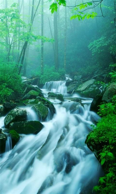 Nature Fall 3D Wallpaper For LG Mobiles