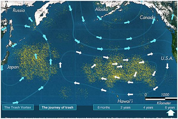Atlantic ocean garbage patch map