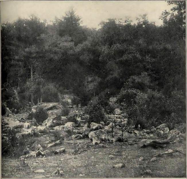Little Round Top photo by Mathew Brady