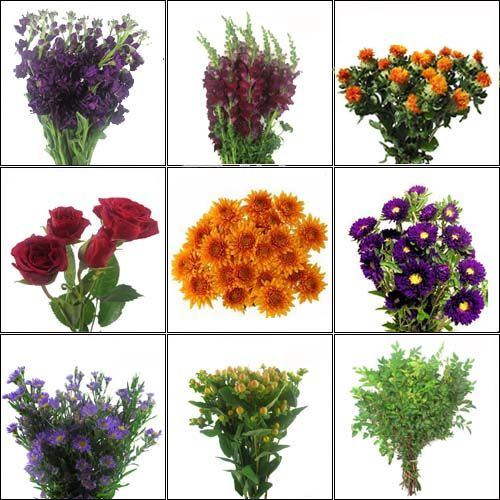 Do It Yourself Wildflowers In August Simple Wedding Flowers Wedding Flower Guide Flower Centerpieces Wedding