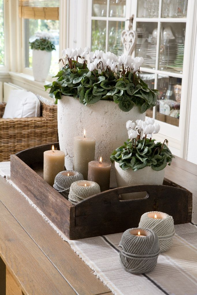 Wooden Trays To Decorate Amusing Een Leuke Combinatie Van Planten En Kaarsjes  Deco  Pinterest Design Ideas