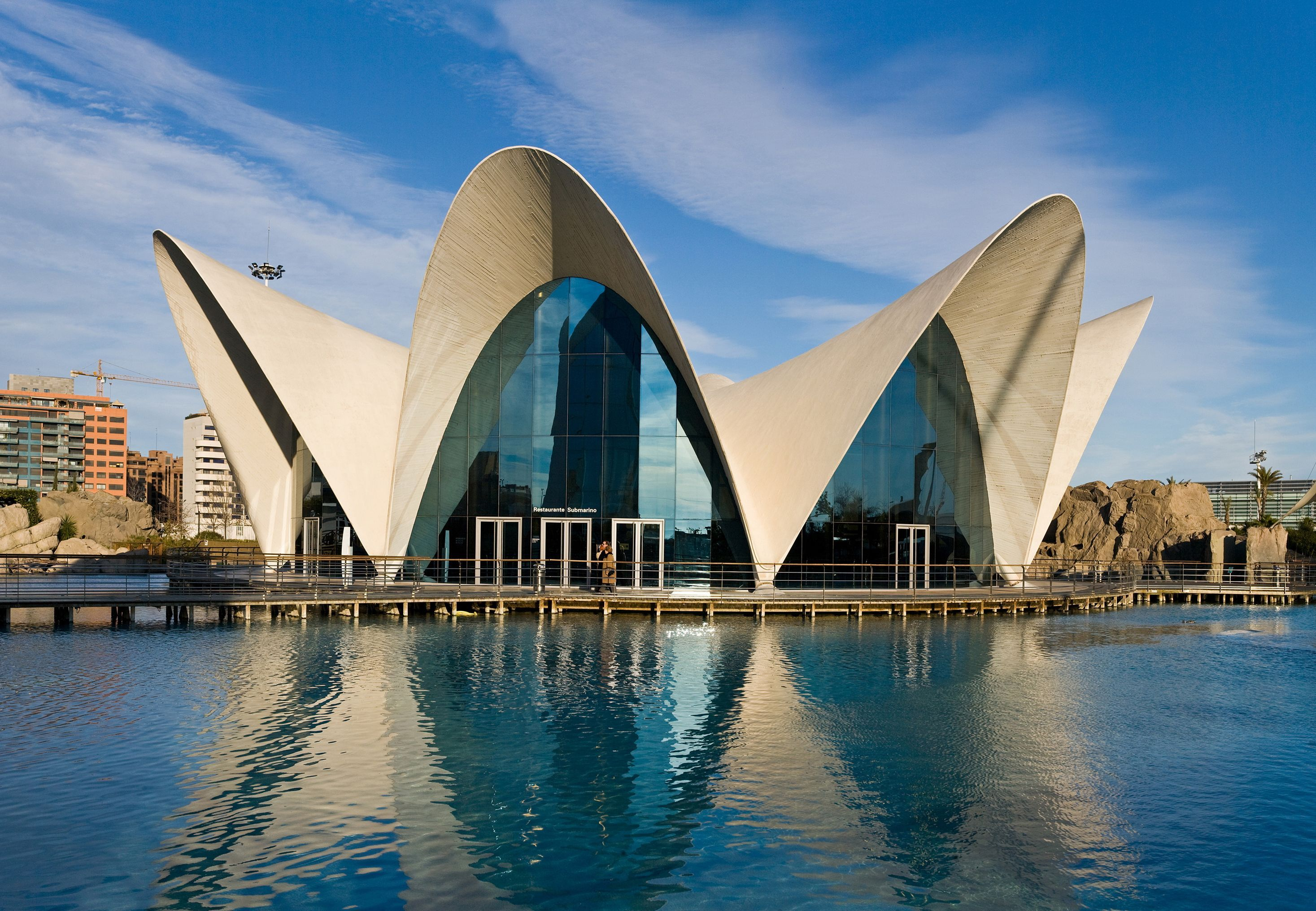 L'Oceanografic, Valencia Spain   Spain road trip, Valencia spain, Valencia