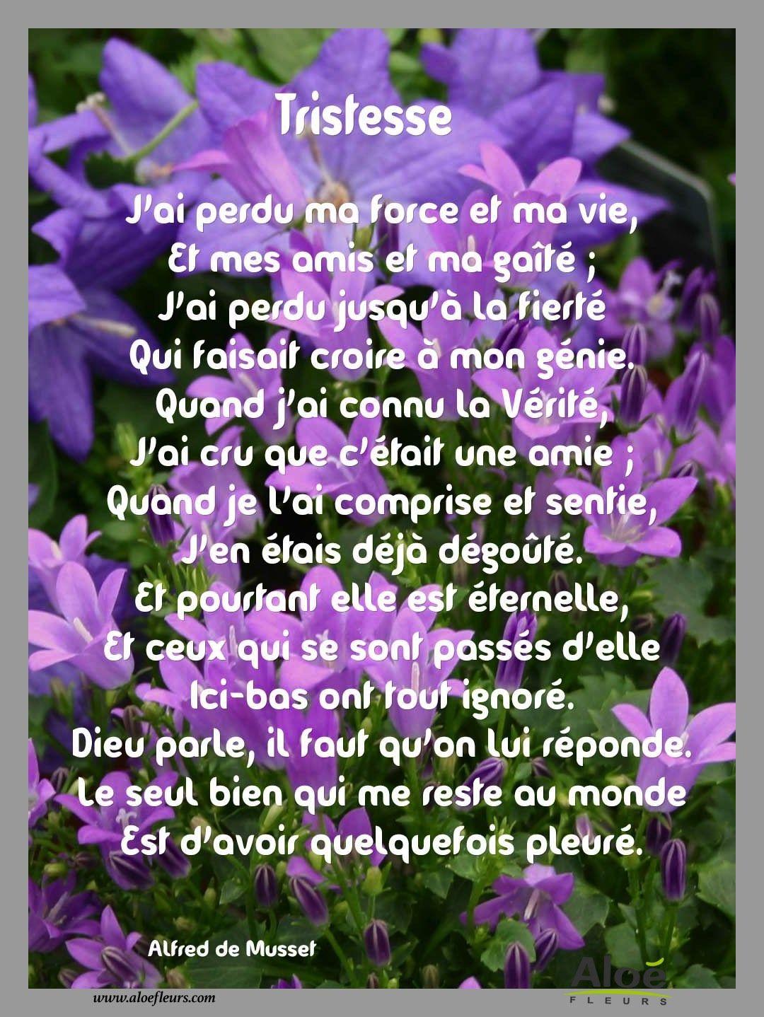 Condoléances Messages Citations Et Poèmes Pour Le Deuil