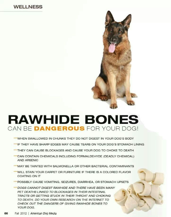 Don T Give To Dogs Rawhide Bones Your Dog Dogs