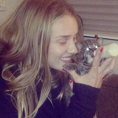 Rosie Huntington-Whiteley with her baby Bobcat