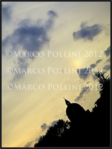 """""""lux""""    ©Copyright by Marco Pollini photographer, all rights reserved 2012    http://www.polliniphotolab.com"""