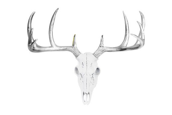 Mini Deer Skull by Wall Charmers Faux Taxidermy | Faux ...