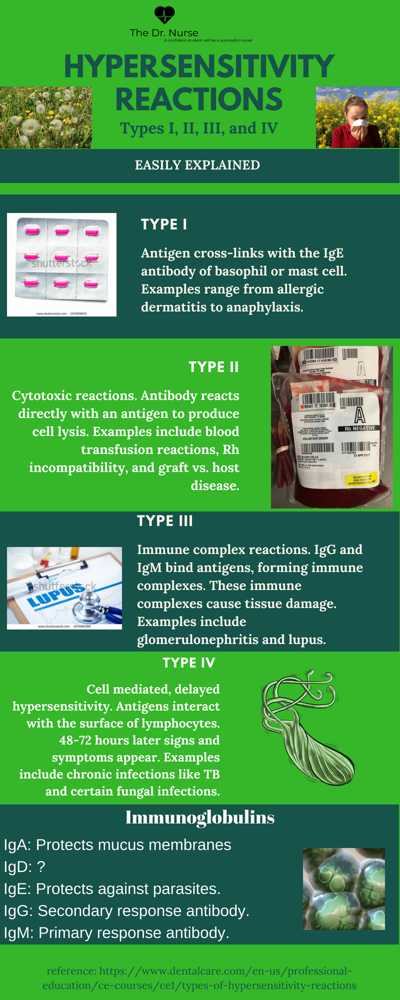 hypersensitivity reactions.png | Hypersensitivity ...
