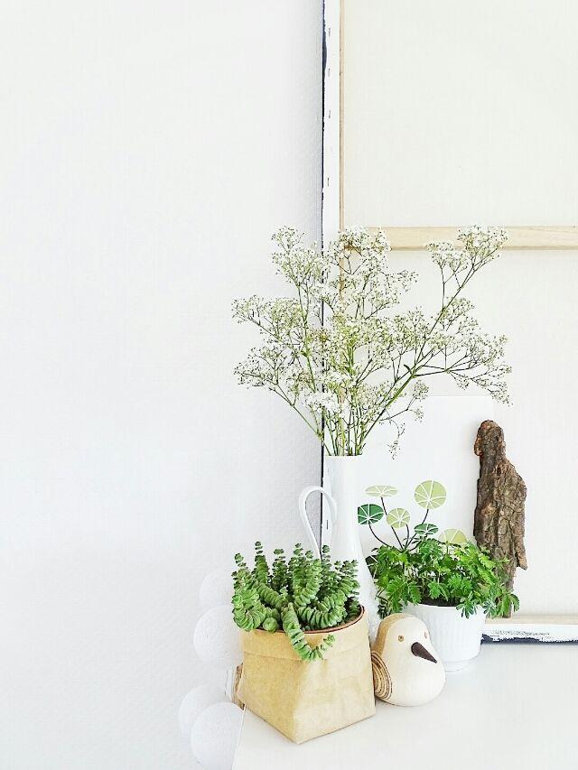 Auf der Mammilade|n-Seite des Lebens: Wohneinblicke & Lieblingsmonat | Ein bisschen Paris, 6x Märzglück, eine Shelfie-Liebe & einfach mal Danke mit Blüten-Pfannkuchen