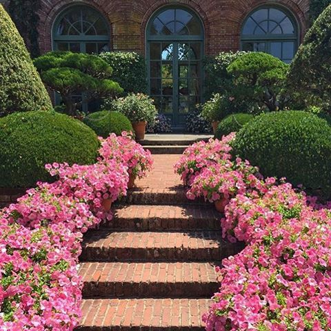 A garden path at Filoli House in Woodside, California, photographed by contributing editor @johnyunis  - Architetural Digest