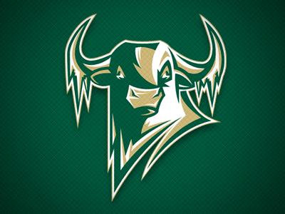 Usf Sun Dome Village Of Tampa Tampa Fl Usf Bulls Usf Bull Horns
