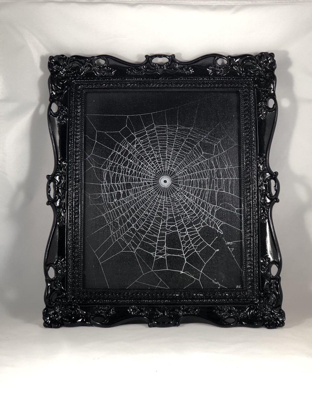Real Spider Web Preserved Spider Web Framed Spider Web Etsy Real Spiders Victorian Frame Spider Web