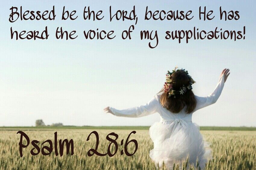 Image result for Psalms 28:6
