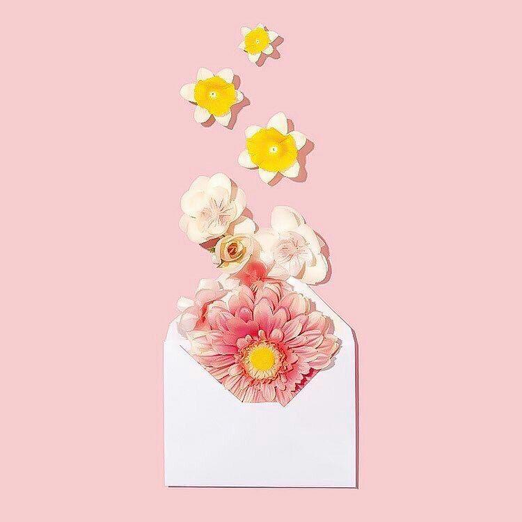 صور و خلفيات جميلة للكتابة عليها 2020 Flower Wallpaper Creative Director Portfolio Art Direction Advertising