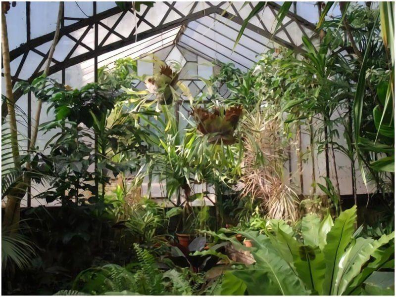 The Jardin Botanico of Montevideo is impressive.