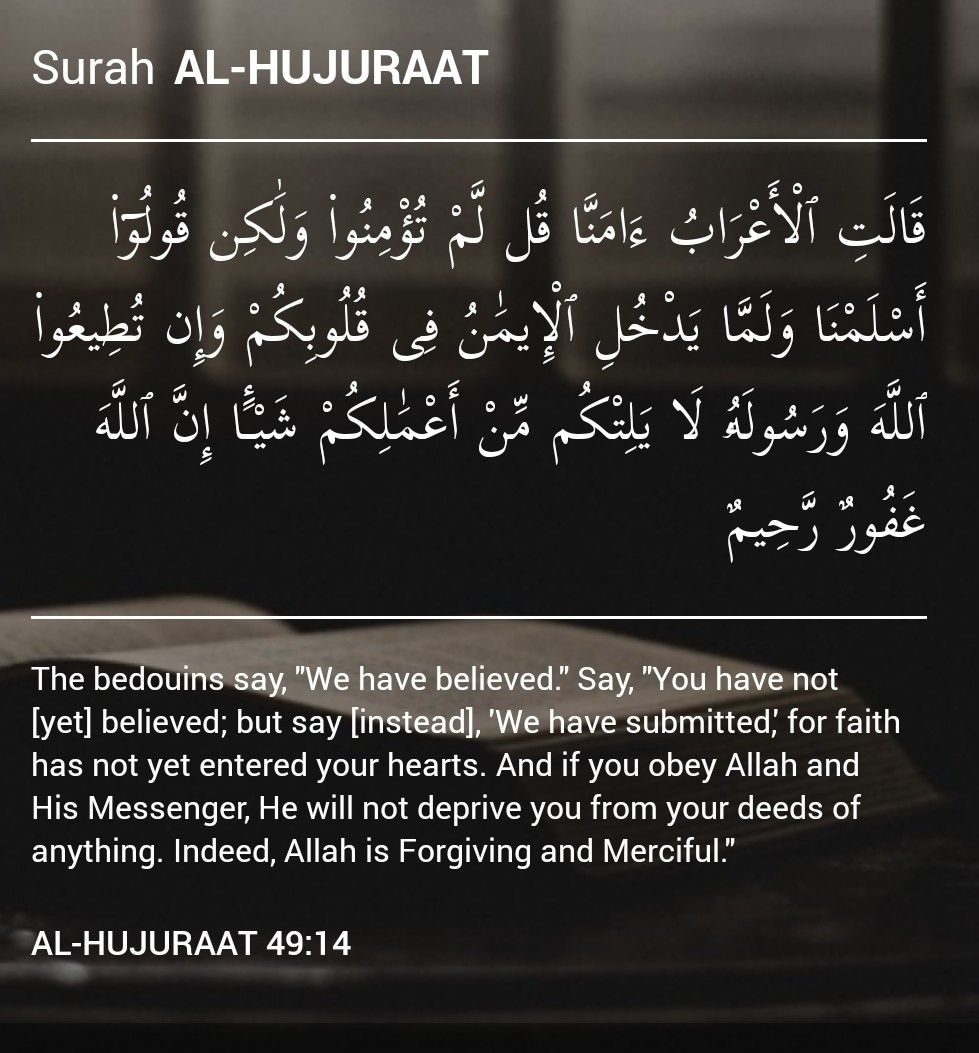 Pin By The Noble Quran On Glorious Quran Prayer For The Day Holy Quran Quran