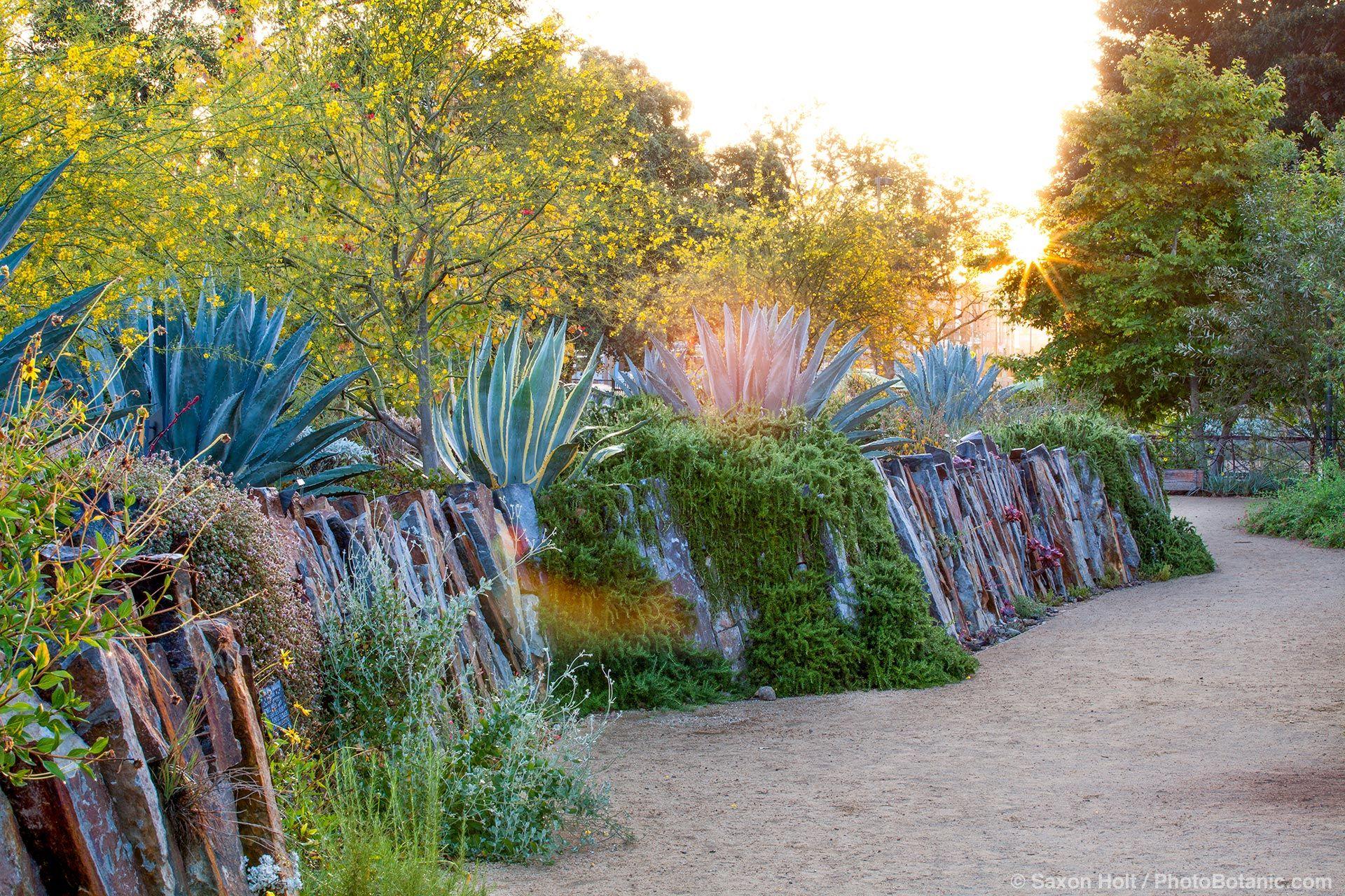 Holt 1129 109 1920c Jpg 1920 1280 Garden Design Landscaping Inspiration Garden Design Magazine