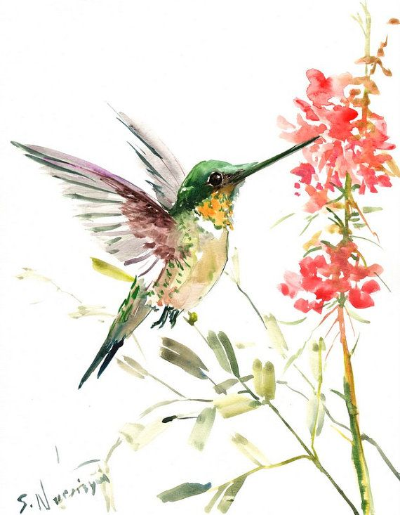 Hummingbird, original watercolor painting, 14 X 11 in ...