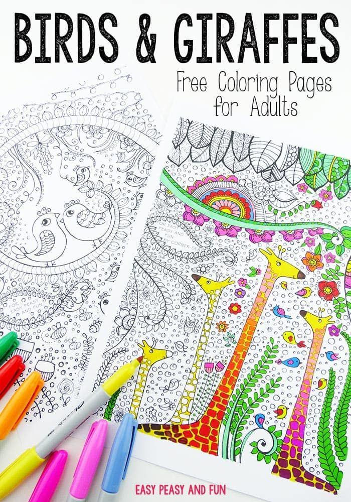 Birds and Giraffes Coloring Pages for Grown Ups   Jirafa, Colorear y ...