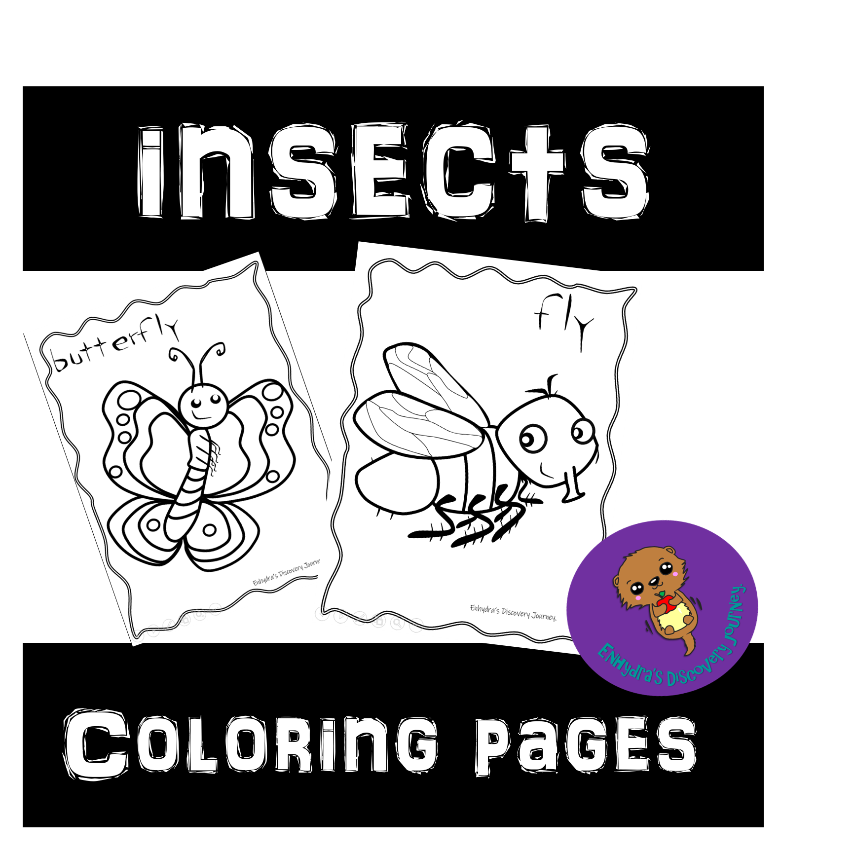 Free Insects Coloring Pages In