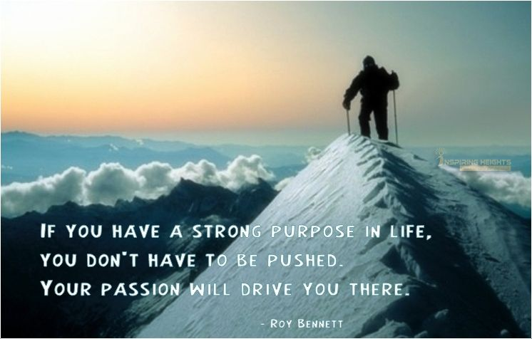 Your passion will drive you..