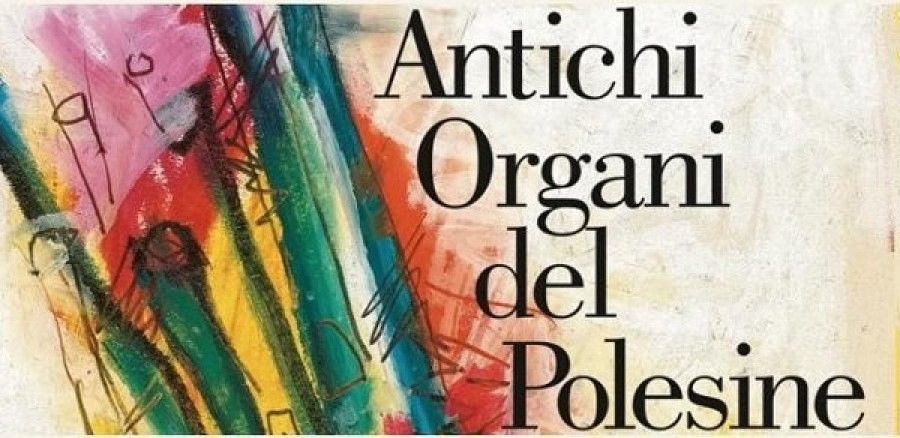 Rovigo – «Antichi Organi del Polesine» Omaggio al compositore Max Reger nel centenario della morte