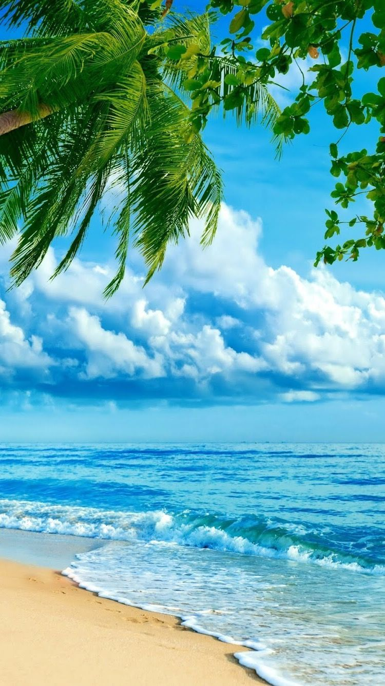 HD iPhone wallpaper 배경, 해변 사진, 해변 배경