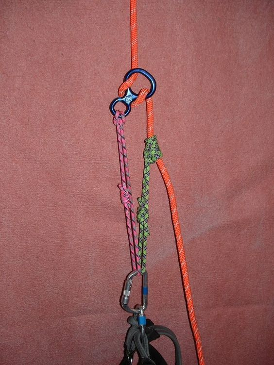 Tree Climbers International Forum :: Topic: Belay and Descending devices (1/1)