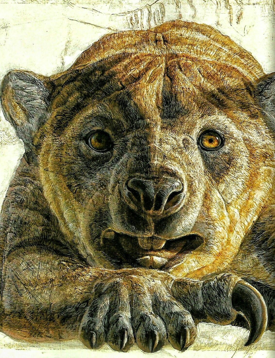 Thylacoleo Carnifex Pouch Lion Is An Extinct Genus Of Carnivorous Marsupials That Lived In Austra Prehistoric Animals Extinct Animals Prehistoric Creatures