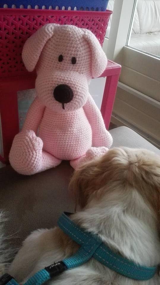 Hond Donna Gehaakt Door Mirjam Berkhout Haken Haakpatroon