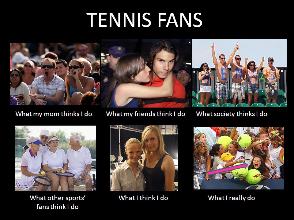 What I Really Do Tennis Fans Funny Meme Menstennisforums