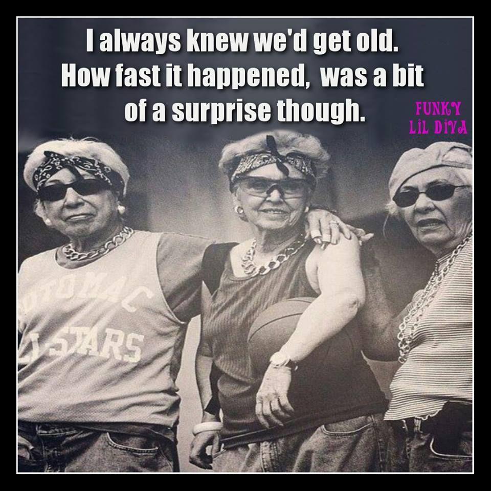 Pin By Tarja Susanna On Birthday Birthday Quotes Funny Funny Birthday Meme Friends Funny