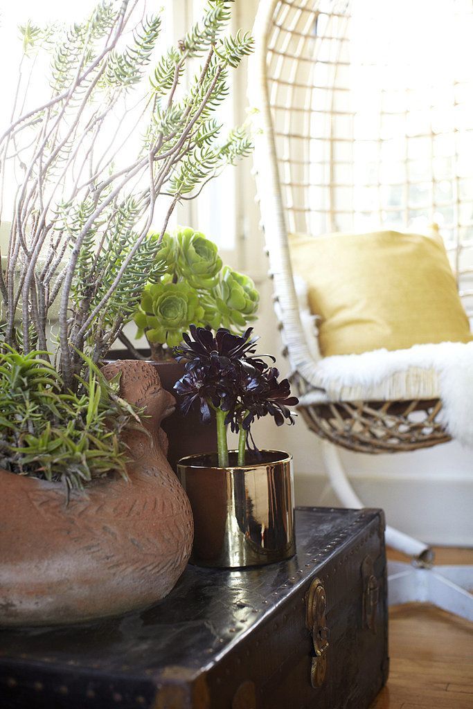 The Easiest Ways to Embrace the Jungalow Trend: Air-quality benefits aside, decorating with plants is one of the easiest ways to make a home feel more lived-in and relaxed.