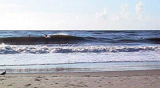 Little Tybee Island Travel Guide And Directory Con Immagini