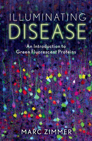 The Protein Book Pdf