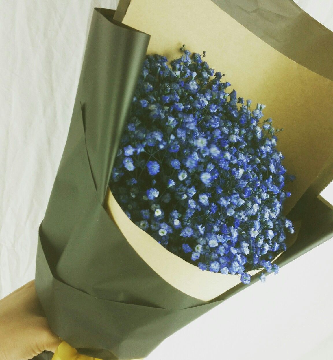 Deep Blue Baby Breath To Keep You Relax While At Work Cheers Order Now Free Flower Delivery Singapore F Florist Delivery Online Florist Flower Delivery