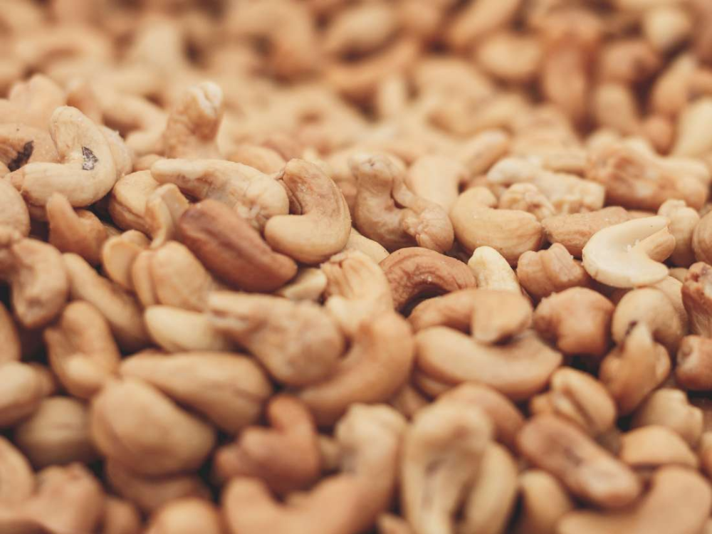 Cashews nuts are rich in protein and other nutrients and