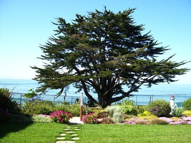 Ocean View Memorial Gardens Saint John