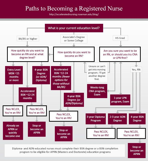 how to become a registered nurse infographic | getting in, Human Body