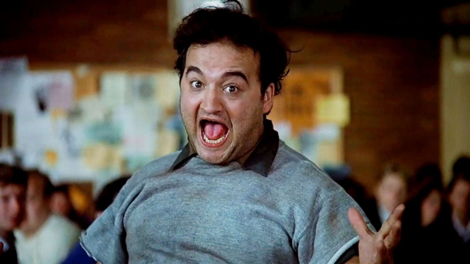 Animal House At 40 Why The National Lampoon Of White Male