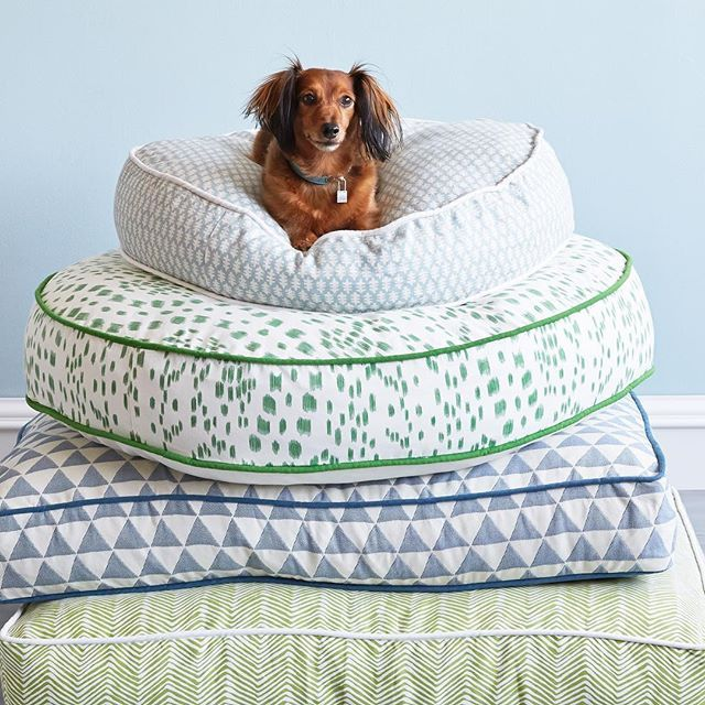 We Might Be A Tad Jealous That These Dog Beds Are More Stylish
