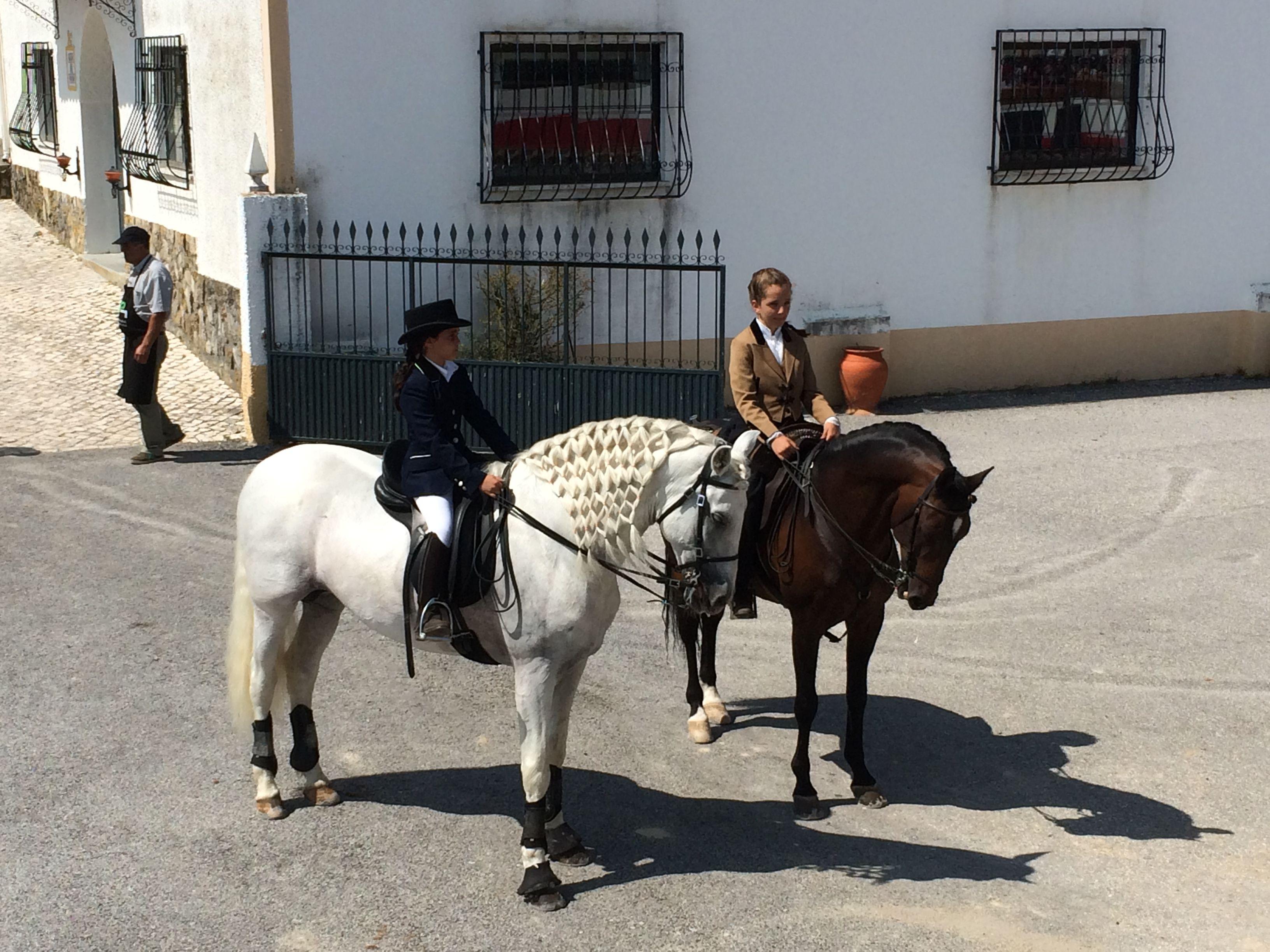 Inicio de Demonstração Equestre