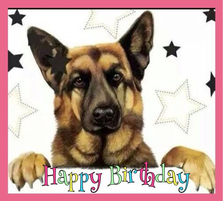 Happy Birthday Card German Shepherd – German Shepherd Birthday Cards