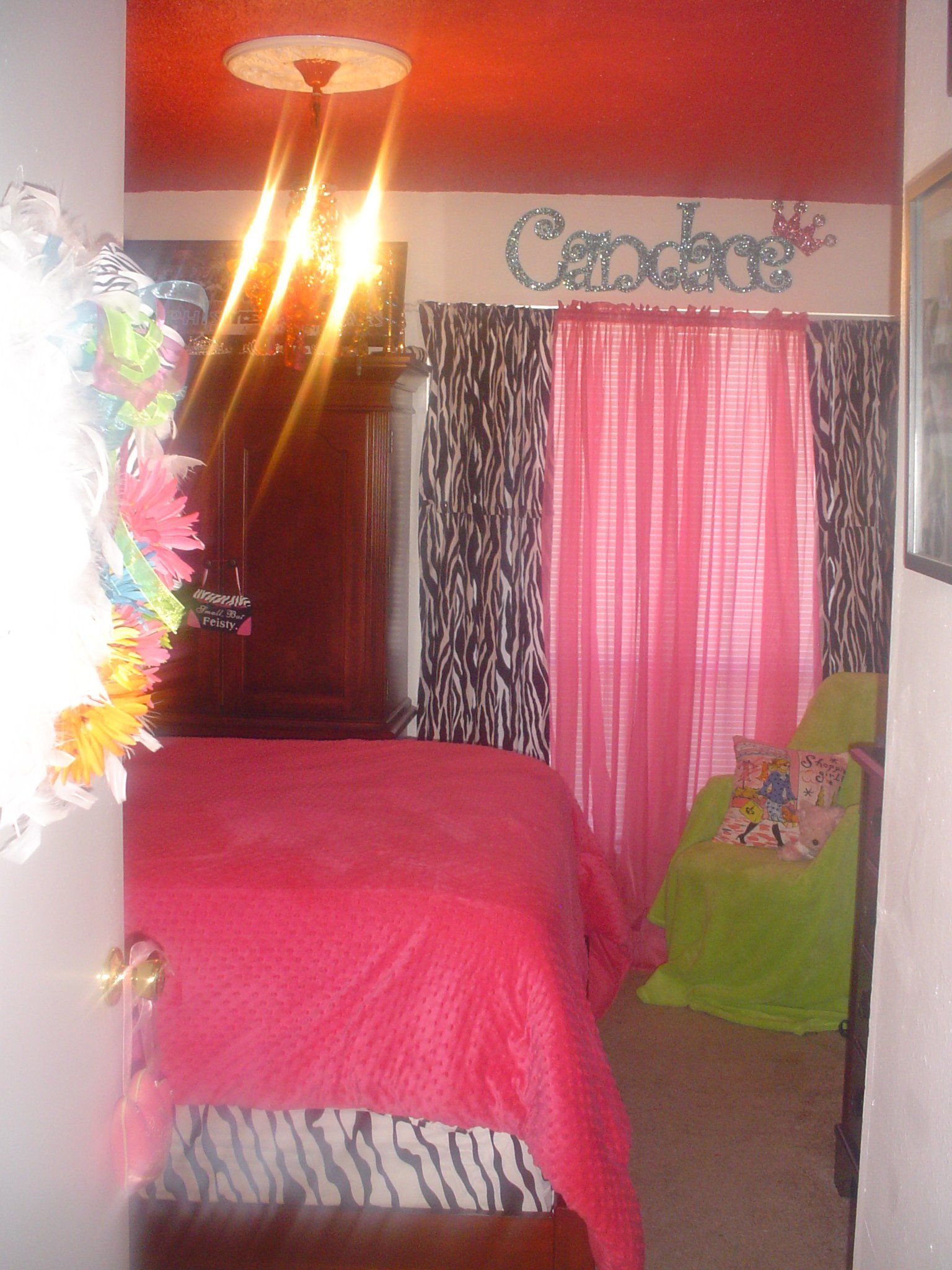 Zebra window coverings  pink zebra  colorful chandelier painted ceilings  candaceus