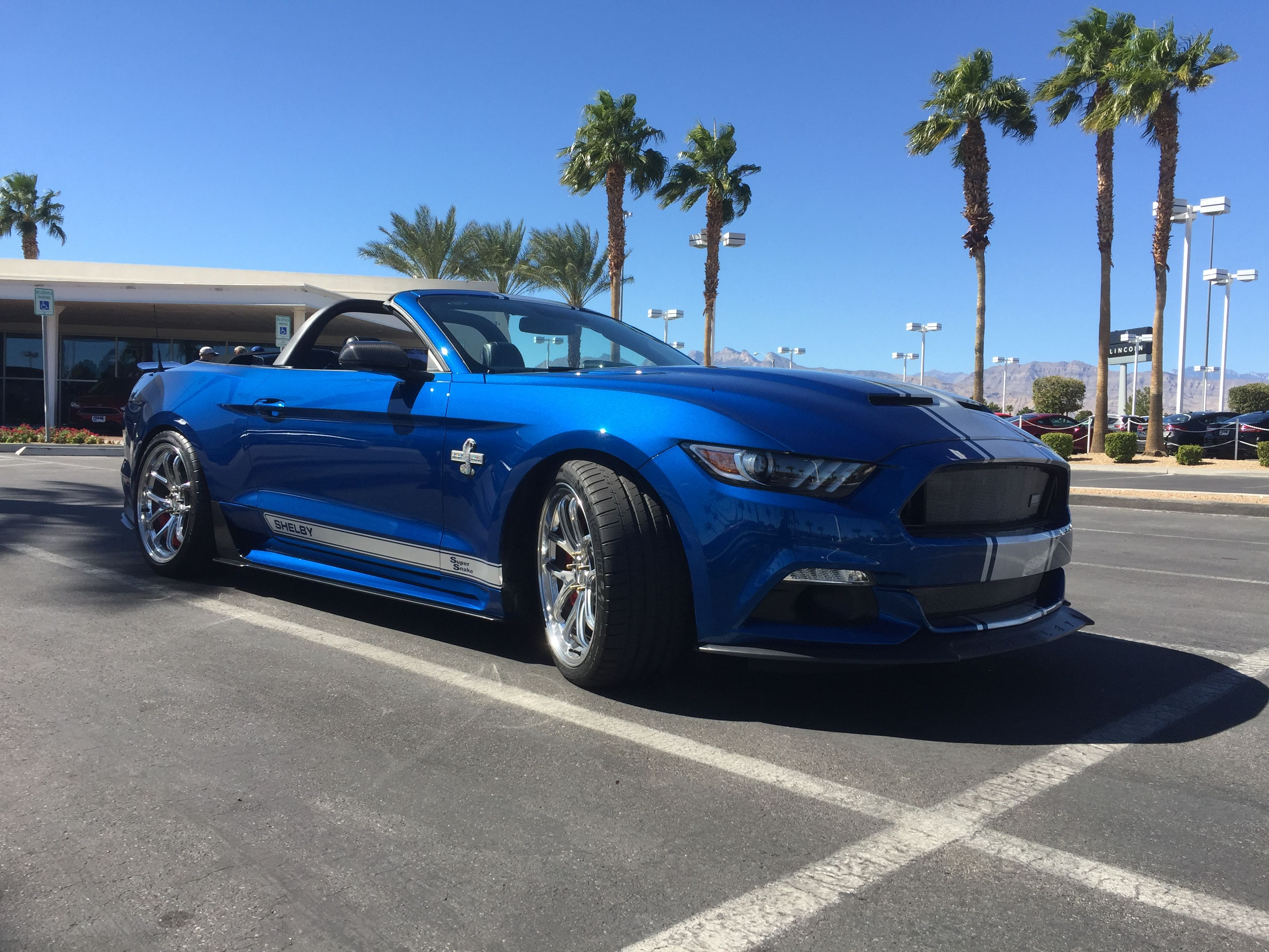 2017 50th Anniversary Shelby Super Snake Convertible One Of In This Particular Color Combination I Sold Car Its Stock Mustang Form