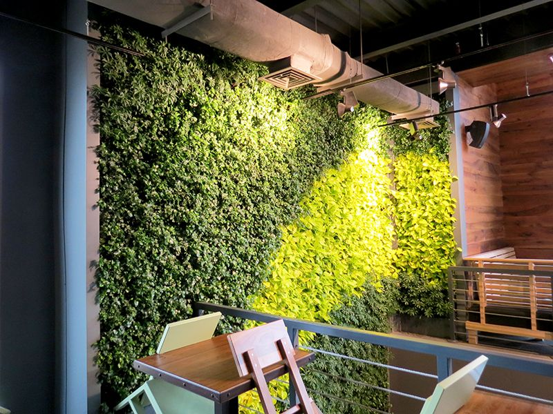wall mounted garden - Google Search Garden Pinterest