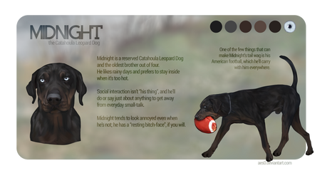 Aes0 Hobbyist Digital Artist Deviantart In 2020 Digital Artist Artist Dog Portraits