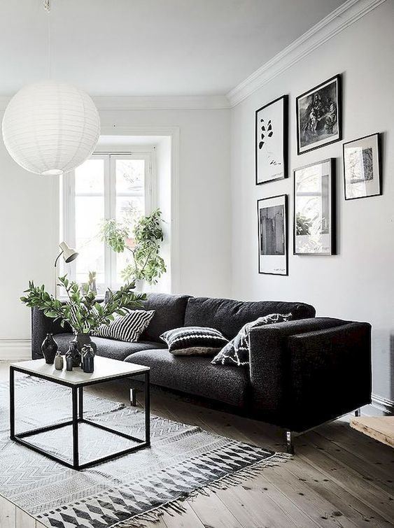 Elegant Living Room With Black And White Color Combination That