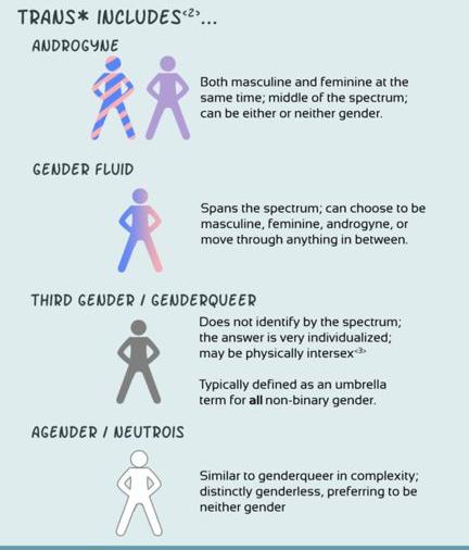 75 Gender Fluid And Abrosexual Stuff Ideas Lgbtqa Lgbtq Pride Lgbtq