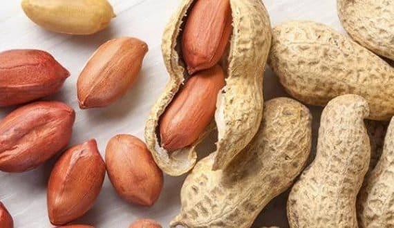 الفول السوداني من المسليات التي يفضل تناولها أغلبنا ولما بنبدأ نعمل رجيم بتسأل كتير هل ينفع آكل فو In 2020 Are Peanuts Healthy Food Evening Snacks